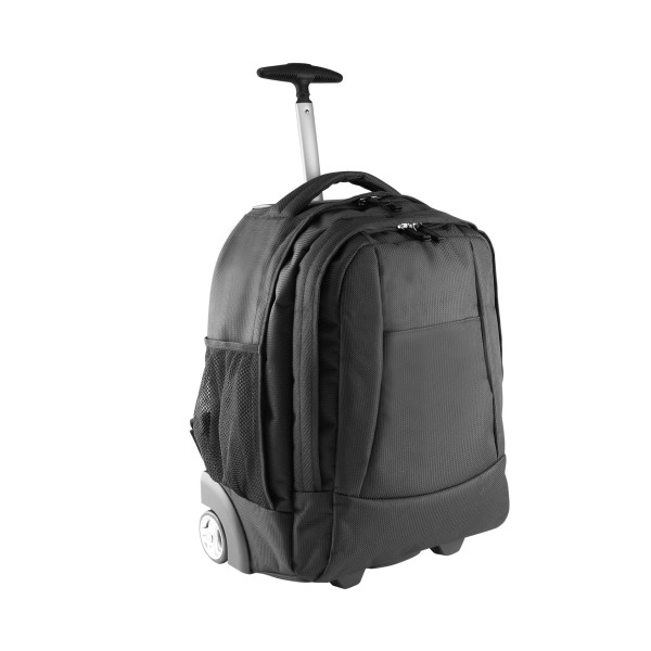 Business cabin size trolley backpack/bag