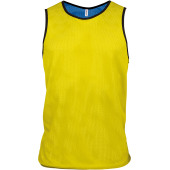 Multi-sports reversible bib