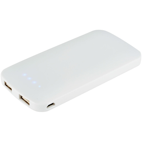 4000 mah Zippy slim dual powerbank